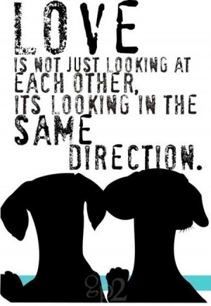 ... not just looking at each other, it's looking in the same direction