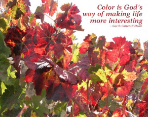 Autumn Grape Leaves with Quote