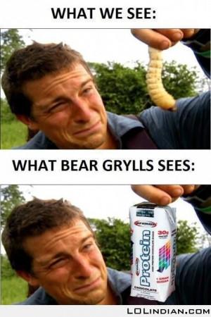 What bear grylls sees