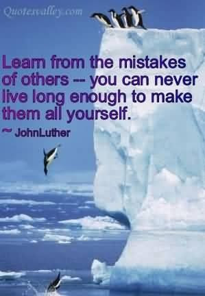 Learn from the mistakes of others quote