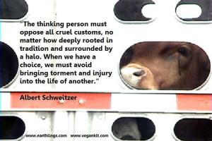 vegan quotes source http invyn com category best vegan quotes