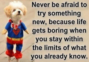 Never be afraid to try something new inspirational quote