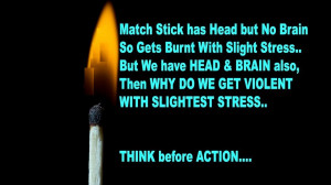 Match stick has Head but no Brain so gets burnt with slight stress but ...