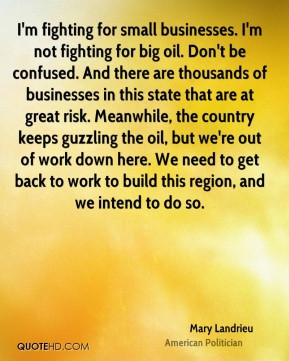 Mary Landrieu - I'm fighting for small businesses. I'm not fighting ...