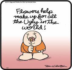 Ziggy Cartoon :)