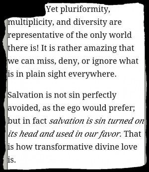 Fr. Richard Rohr. Falling Upward....