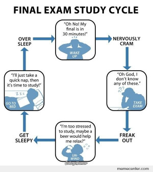 Final Exam Study Cycle