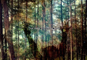 Colours Forest Quote Text