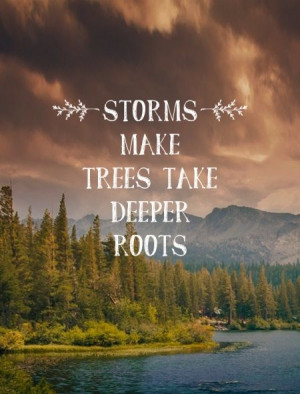 , Quotes Funny Pictures, Advice Quotes, Storms Deeper Roots, Quotes ...