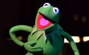 Kermit The Frog But Thats None Of My Business