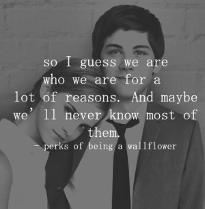 Tag Archives: Perks of Being A WallFlower quote