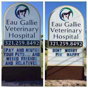 Veterinarian With An Awesome Sense Of Humor!