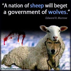 Nation-Of-Sheep.jpg