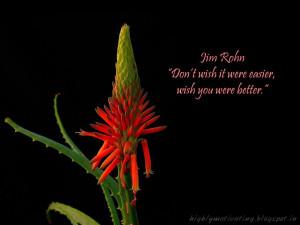 Motivational Wallpaper - Jim Rohn Quote
