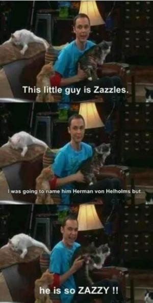 Sheldon Cooper ZAZZIES