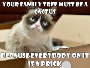 grumpy cat images with quotes | Grumpy Cat | quotes