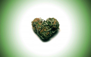 Weed Funny Quotes And Sayings ~ Quotes For > Weed Quotes And Sayings ...