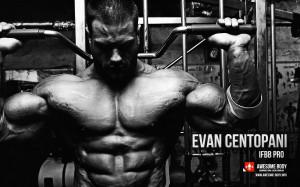 Evan Centopani Wallpapers   Superheavyweight Class   American ...