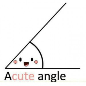 acute angle cute math joke small