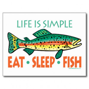 Funny Fishing Saying Post Cards