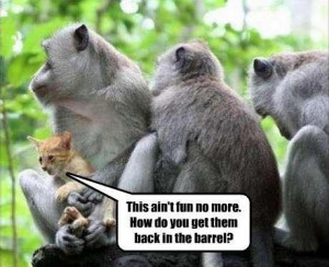 nice funny animal quotes