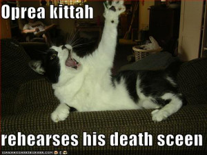 Other operacats (lol-cats)