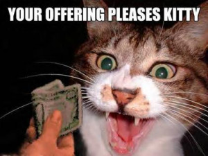 , funny animal scraps, funny cats comments and graphics, crazy cats ...