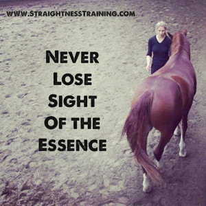 It is not enough to be busy doing exercises with your horse. If you ...