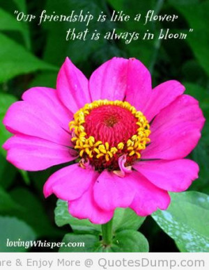 Flower Quotes For Friends Is like a flower that is