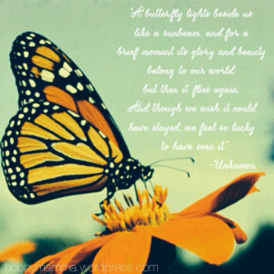 grief loss pregnancy loss miscarriage comfort butterflies butterfly ...