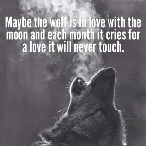 Displaying 14> Images For - Spirit Wolf Sayings...