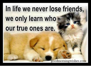 friendship quotes, quotes about friendship, True Friend Good Morning ...
