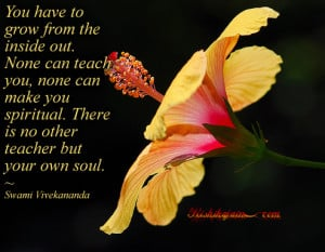 Quotes ,swami Vivekananda quotes, soul quotes, Inspirational Quotes ...