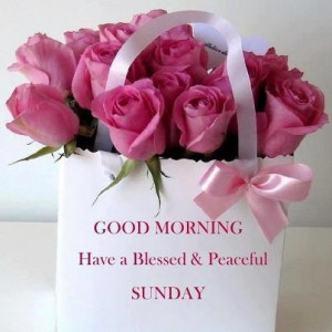 Blessed Sunday Morning Quotes Good morning have a blessed