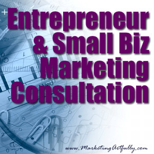 Entrepreneur and Small Business Marketing Consultation