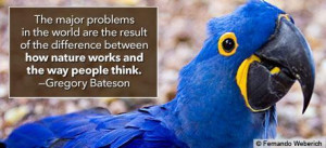 Environment quotes, positive work environment quotes