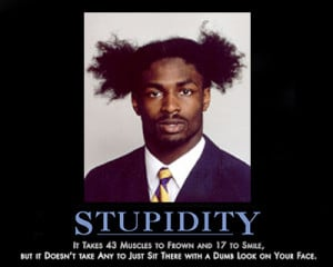 Funny Stupid (5)
