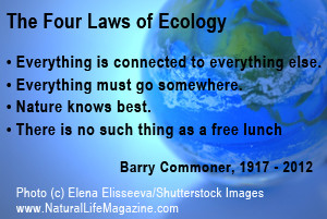 Ecology,like genetics,is not about equilibrium states.