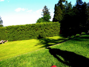 Summer Picnic Quotes http://epicuriousvegan.com/summer-picnic-menu/
