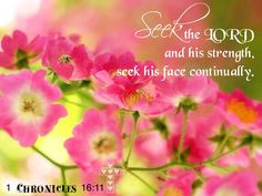 Chronicles 16:11. Seek The Lord...continually. More