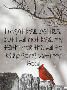 might lose battles quotes god life bird faith christian *AMEN! With ...