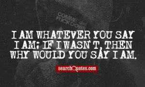 rapper eminem tagged eminem famous lines popular fun and quoted