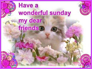 have a wonderful SUNDAY..
