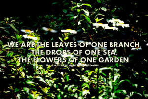 Get the Best Priced quotes about flower garden
