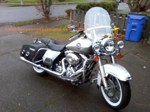 Funny Harley Davidson Pic