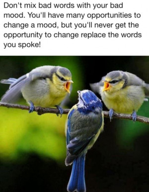 Don't mix bad words with your bad mood . You'll have many ...