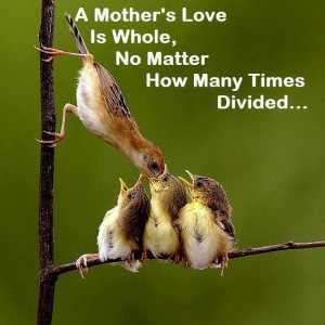 Mother's love are same every where around the earth: