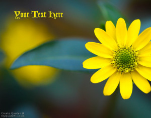 Quote Design Maker - Yellow Macro Flower Quotes