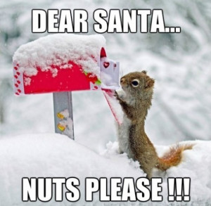 Dear Santa Jpg
