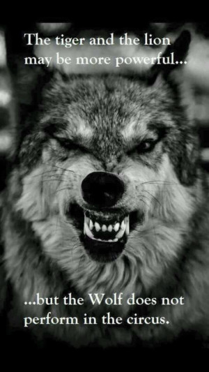 ... and lion may be more powerful but the wolf not perform in the circus
